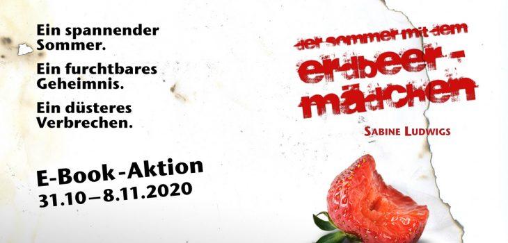 """E-Book-Aktion mit """"Der Sommer mit dem Erdbeermädchen"""""""
